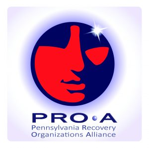 PRO A LOGO new 2014_SQUARE format (1)